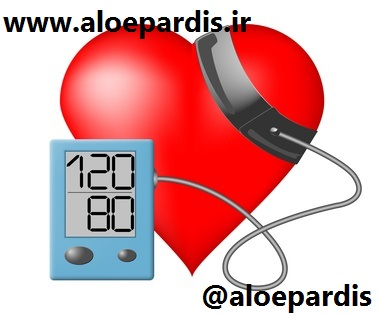 Heart and blood pressure monitor on a white background